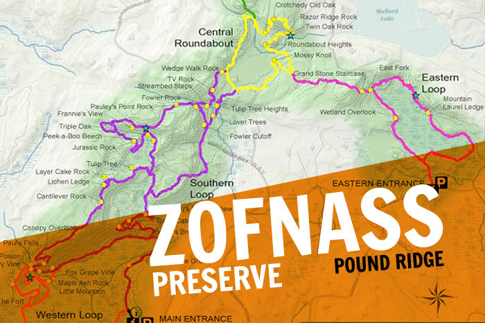 March 23, Zofnass Family Preserve