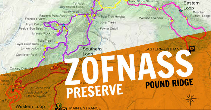 June 14, Zofnass Family Preserve