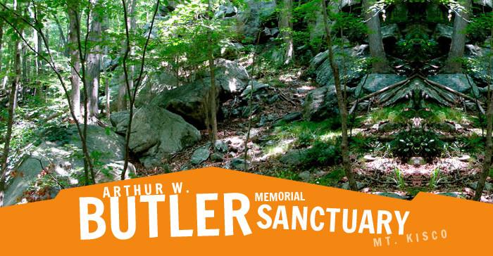 June 7, Butler Sanctuary